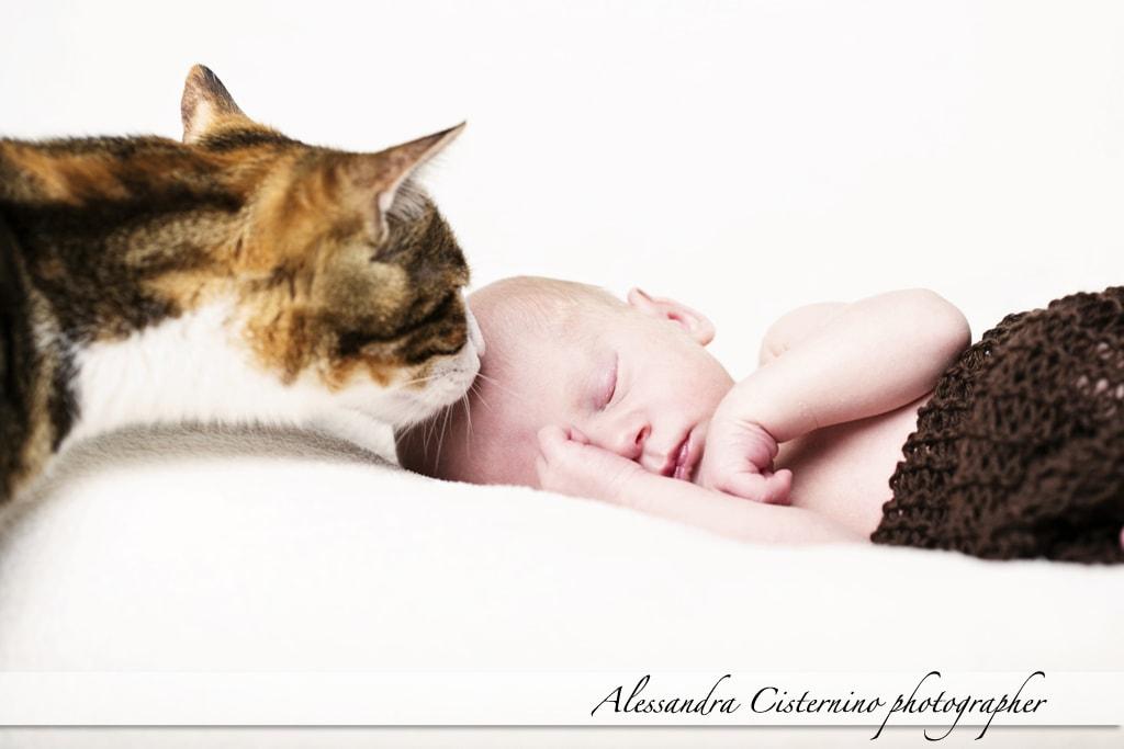 Dante | fotografo neonati roma | newborn photographer