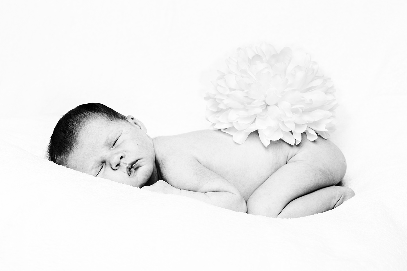 Adele | newborn photography